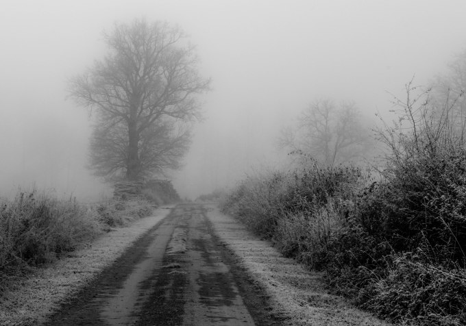 Freezing fog