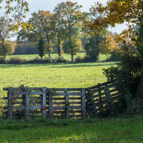 An old wooden fence marks a field boundary; about half a mile from here.