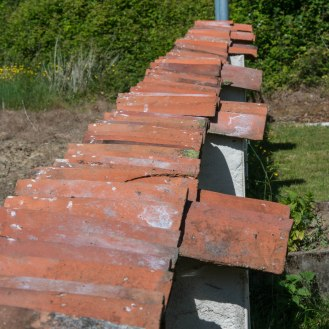 Old roof tiles used to top a wall between my garden and fields